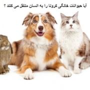 کرونا حیوانات خانگی